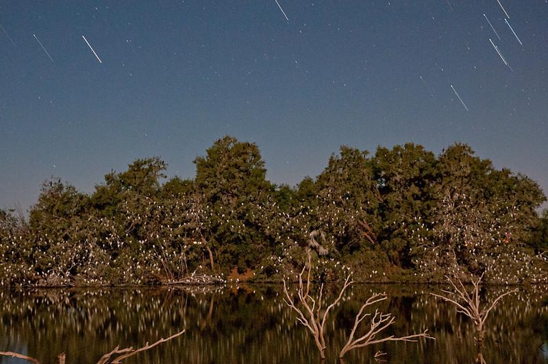 Stars over Sunbeam Lake
