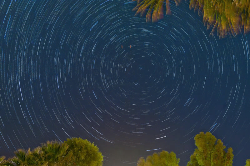 Star Trails over Sunbeam Lake, Imperial County, California. Eucalyptis and palm trees. Air and light pollution evident. Trees artificially lighted.