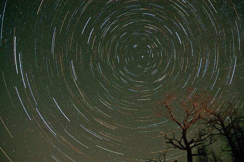 Yellowstone Stars