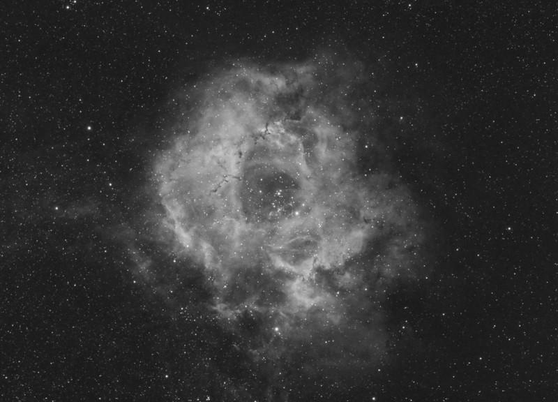 Rosette Nebula H-alpha