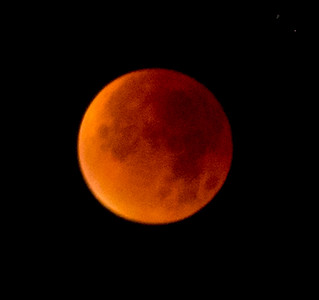 Blood moon 2015