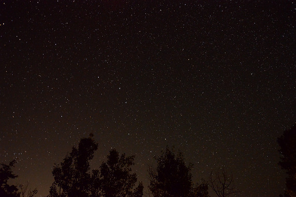 Stars from Cabin