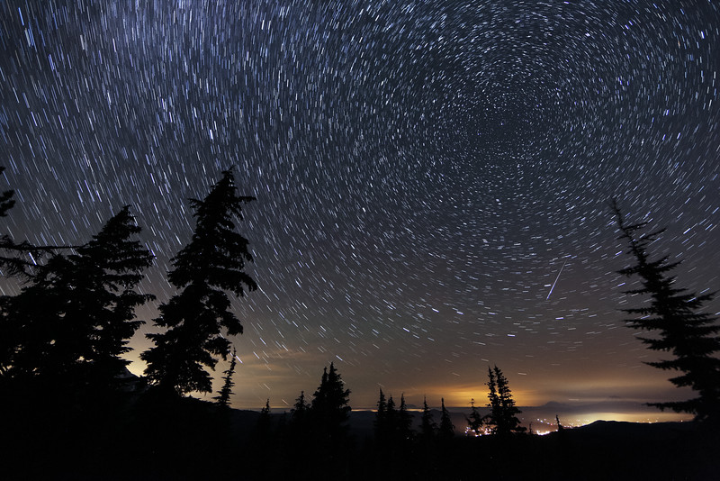 Perseid Meteor Star Trails