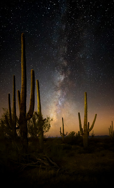 MIlky Way in Saguaro National Park