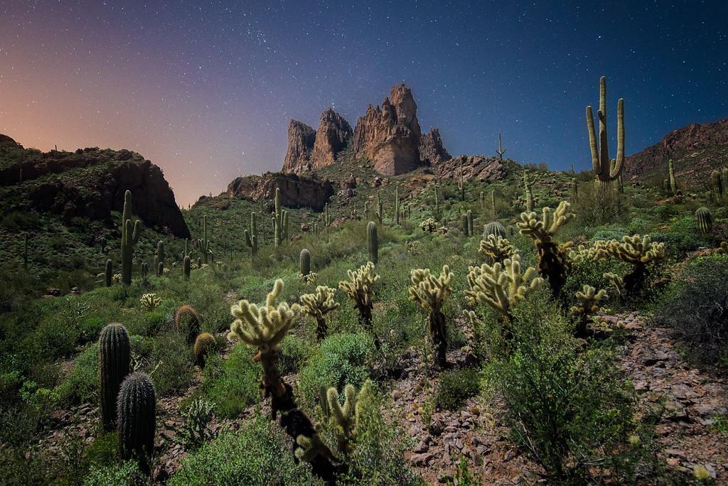 Superstition Wilderness at Night