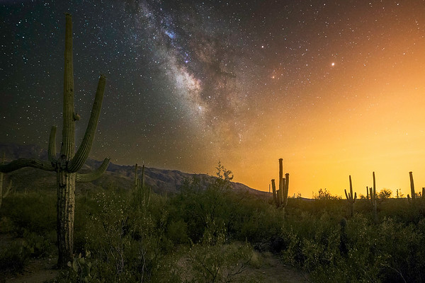 Saguaro National Park East Milkyway