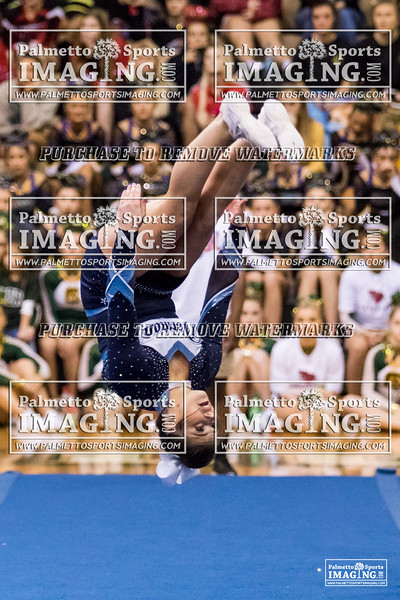 Dorman 2018 5A Cheer Qualifier-34
