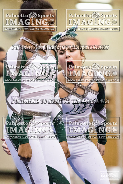 Dutch Fork 2018 5A Cheer Qualifier-13