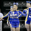 3Lewisville Varsity Cheer 2018 State-39