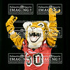 7 Blue Ridge Varsity Cheer 2018 State-10