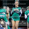 13 Easley Varsity Cheer 2018 State-17