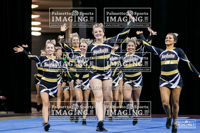 16 TL Hanna Cheer 2018 State-1