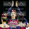 3 White Knoll Varsity Cheer 2018 State-3