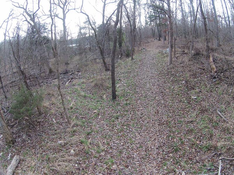 Arkansas:  David's Trail