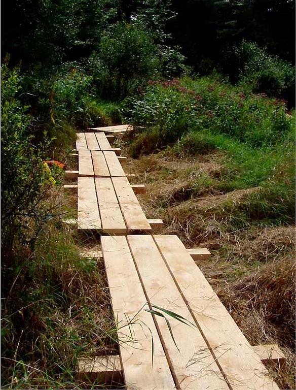 Vermont:  Wetland Access boardwalk