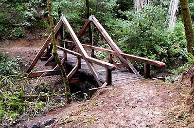 California: Johnson Camp Trail