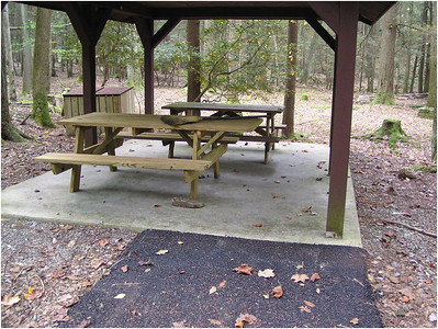 West Virginia:  Laurel Fork Trail
