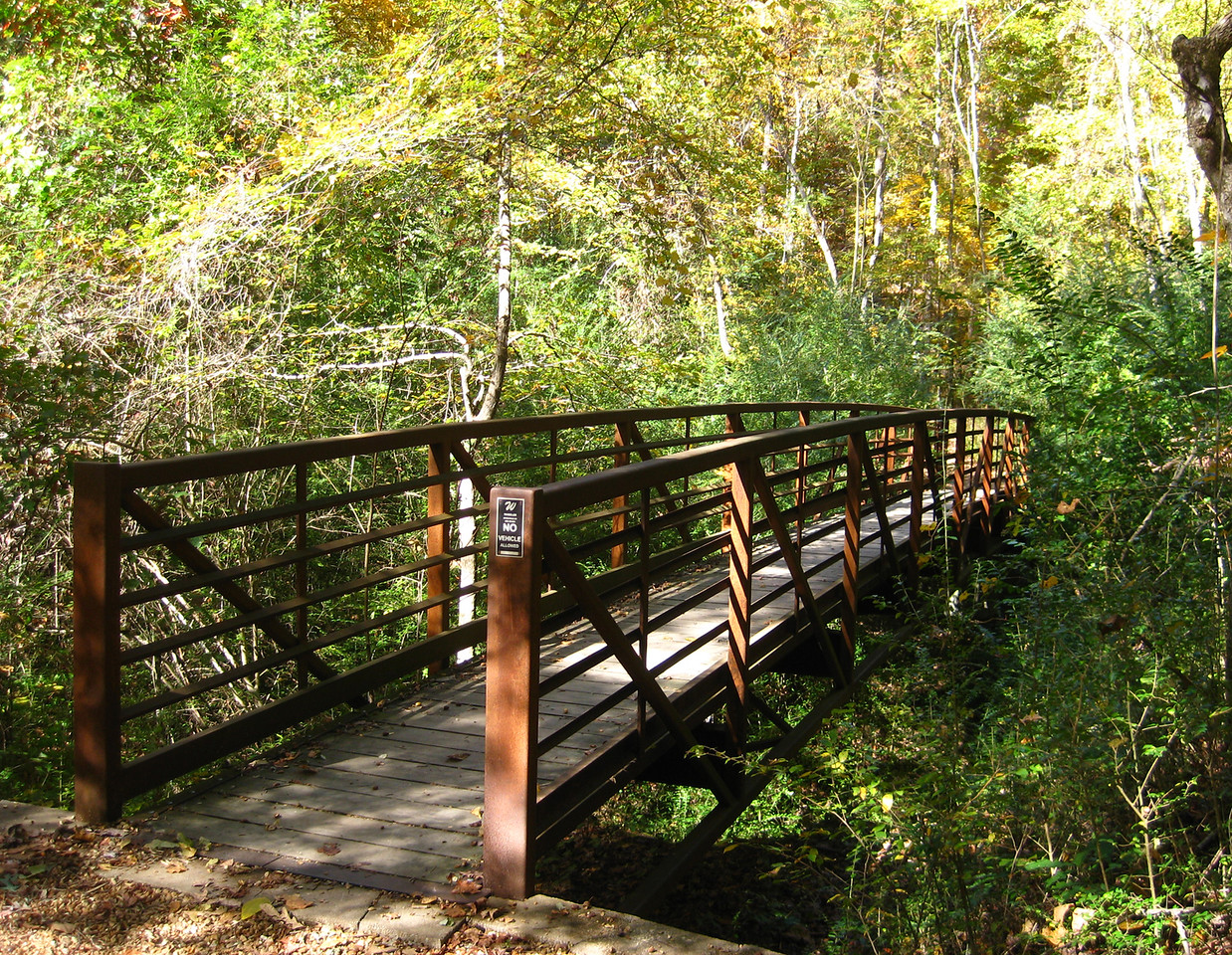 Mississippi: Bailey's Wood Trail