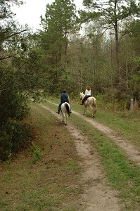 South Carolina:  Mullet Hall Equestrian Trail