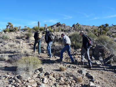 Arizona: Dolan Springs Trail