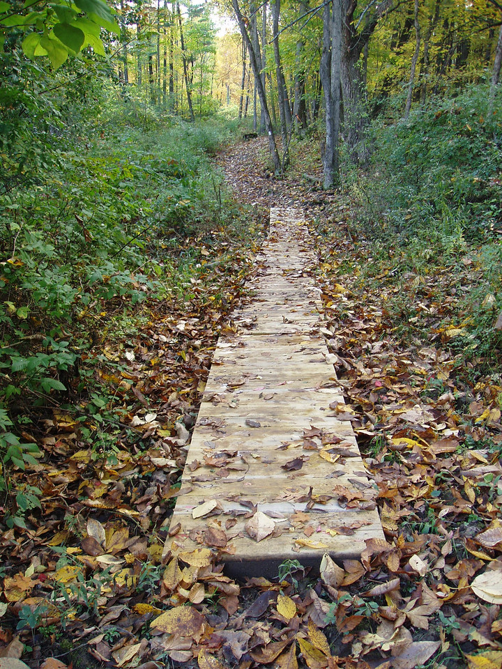 New York: Plotterkill Preserve Land Aquisition and Trail Development