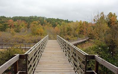 Arkansas: Lake Ouachita Vista Trail