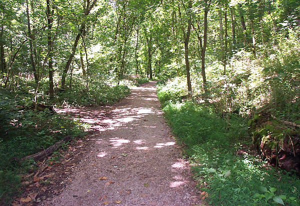 Kentucky: Cove Spring Park Trails