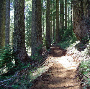 Oregon: Kerby Peak Trail