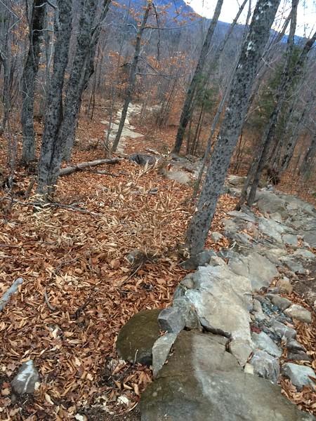 Maine: Carrabassett Valley Mountain Bike Connector Trails