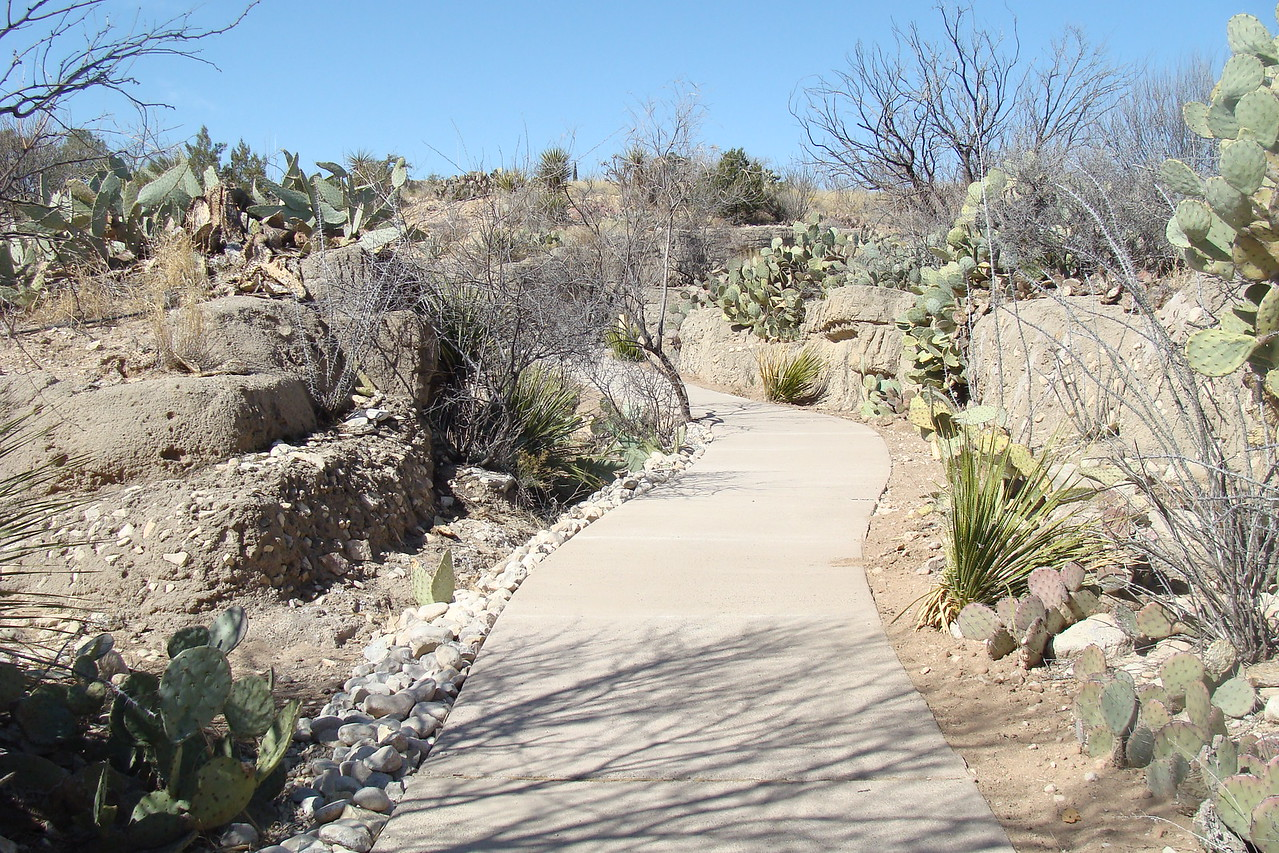 New Mexico: Accessible pathway