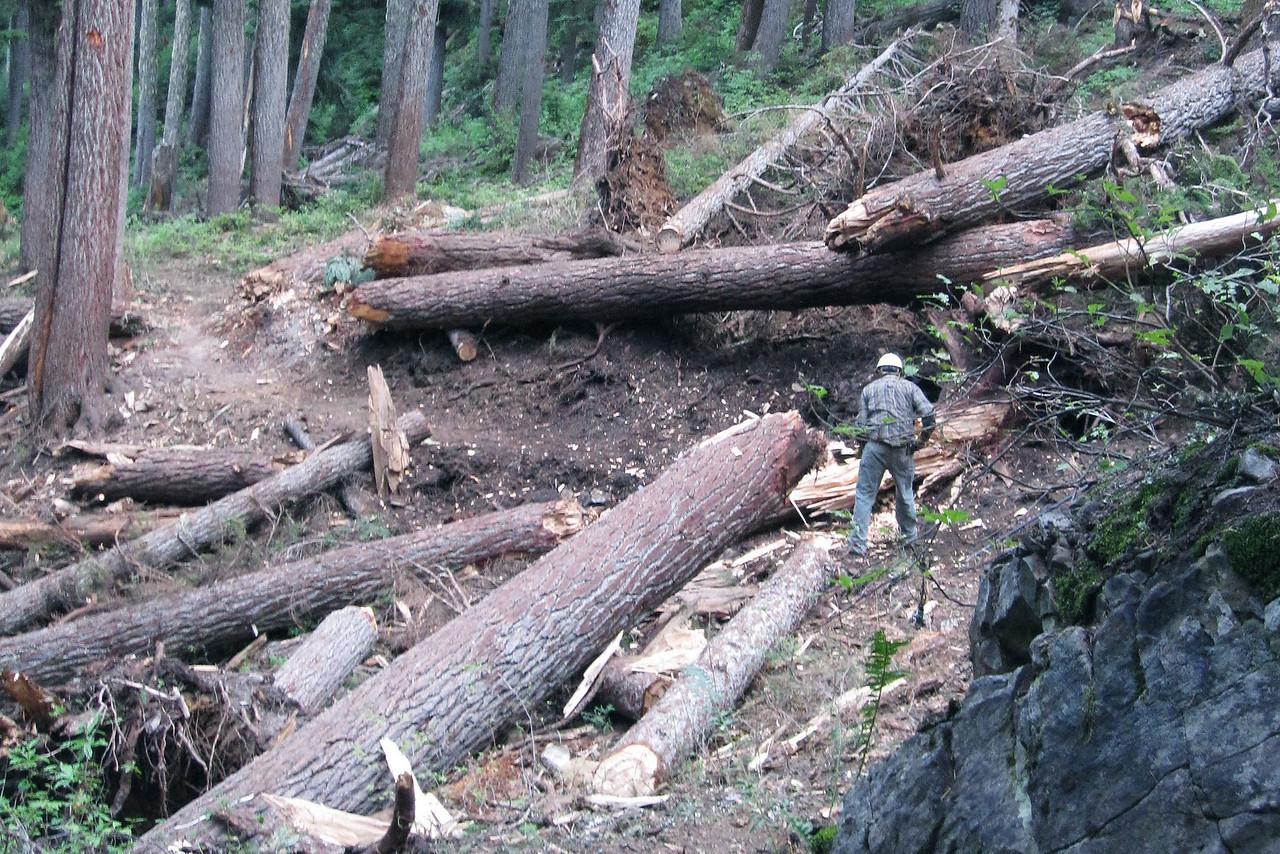 Washington:  Pacific Crest National Scenic Trail