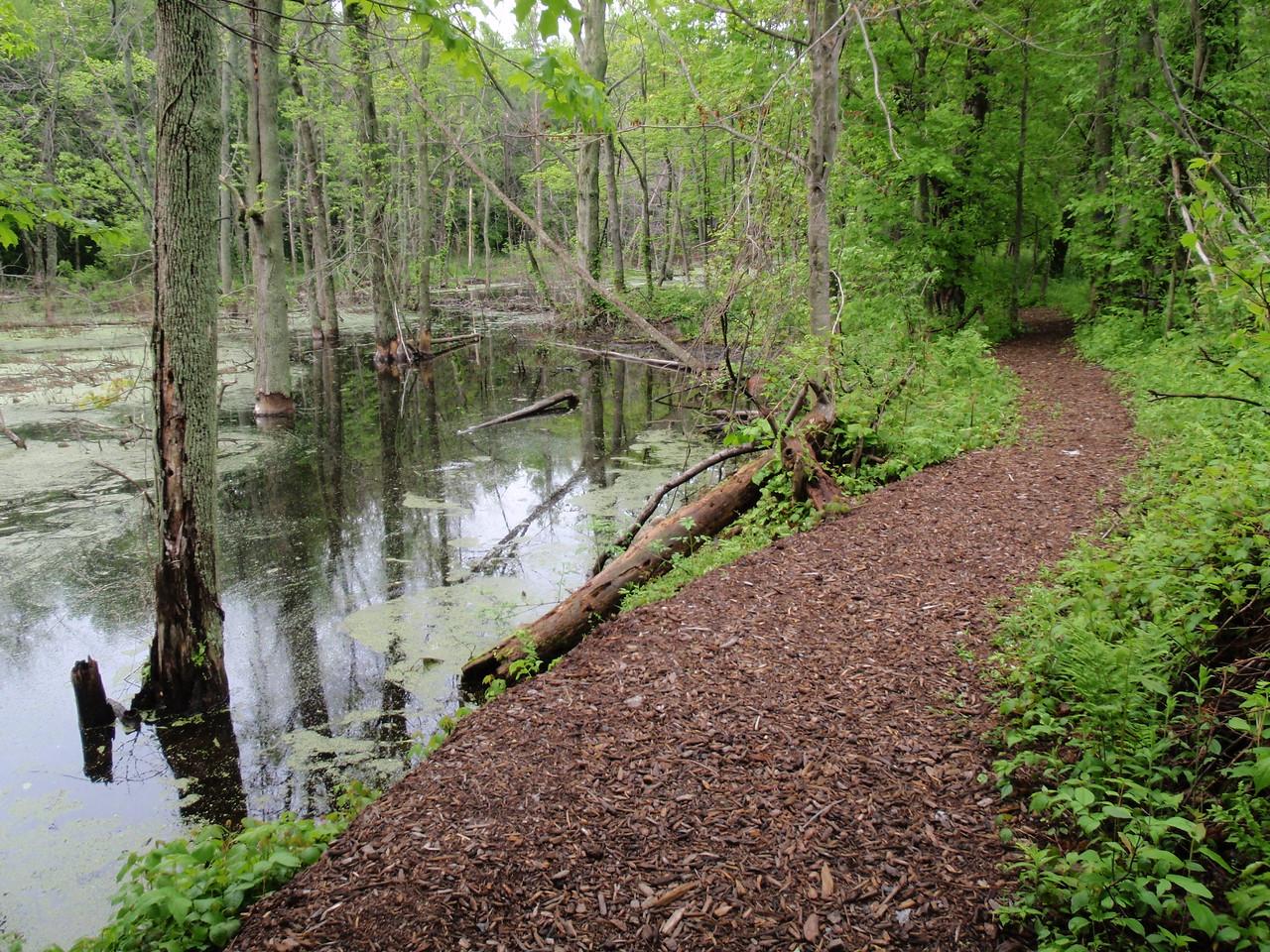 New York: Heron Trail