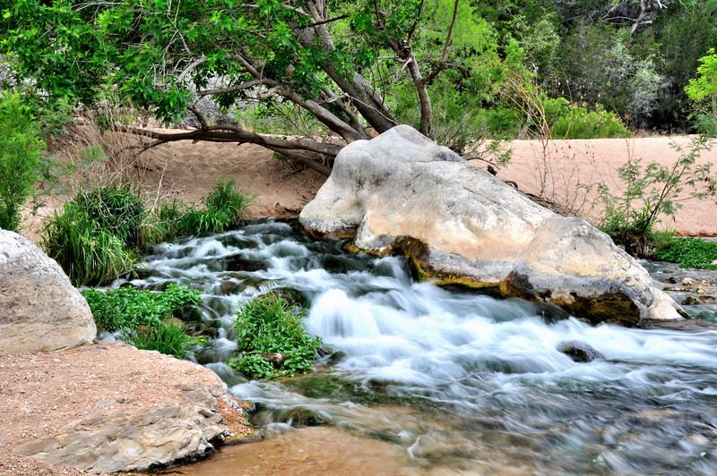 This water comes from underground immediately under the tree and then flows around both sides of the large boulder.