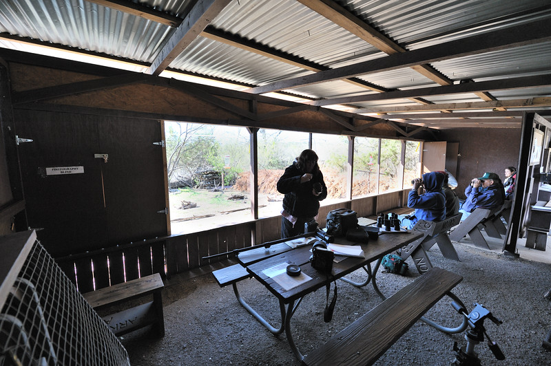 This is the inside of the bird blind in the park.  The birds are fed and volunteers remain in the blind to answer questions and help identify the birds that come to the park.  Note the photography windows at either end of the observation windows.  The glass is one-way so the birds are not scared away by those viewing from inside.