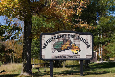 Entering Nerstrand Big Woods State park