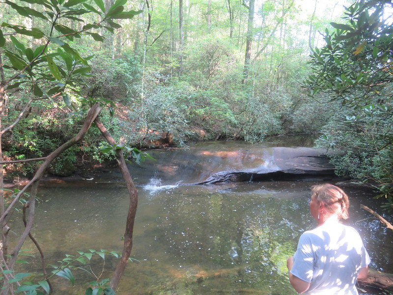 creek below the dam