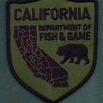 CALIFORNIA 40