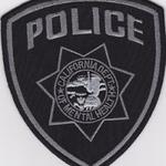 WISH,CA,CALIFORNIA DEPARTMENT OF MENTAL HEALTH POLICE SUBDUED 1