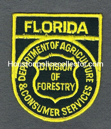 FL DEPT OF AGRICULTURE DIVISION OF FORESTRY