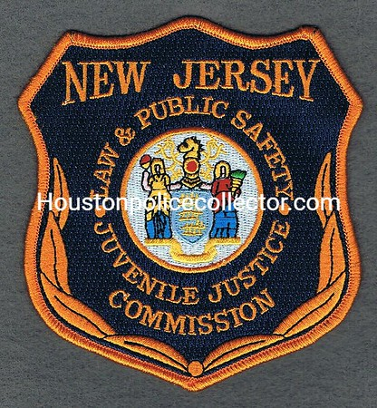 NEW JERSEY JUVENILE JUSTICE COMMISSION