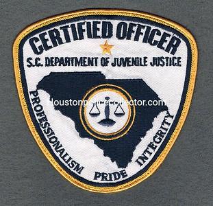 DEPT OF JUVENILE JUSTICE LARGE
