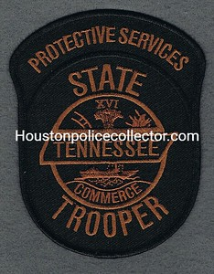 TENN PROTECTIVE SERVICES