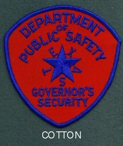 GOV SECURITY 31