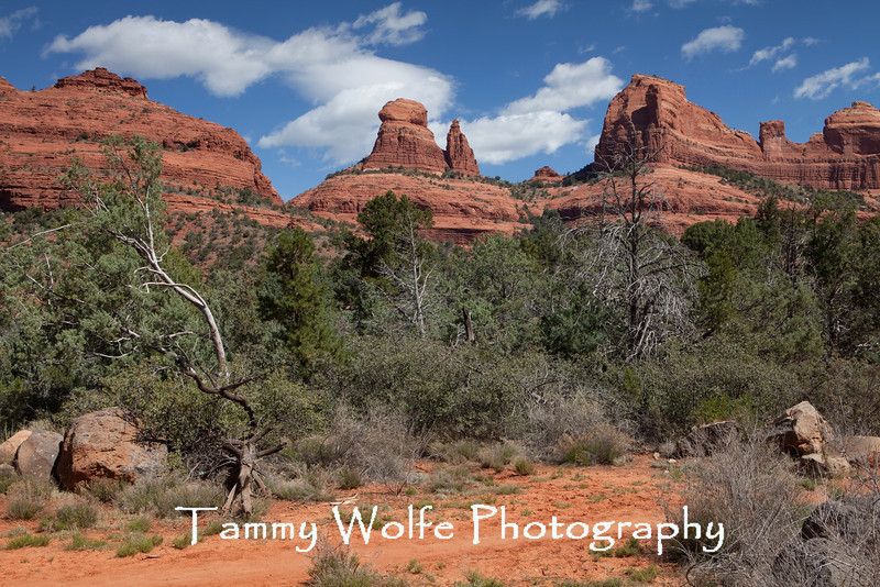 Schnebly Hill Trail , Sedona, Arizona