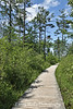 Big Bay State Park Boardwalk, Madeline Island, Wisconsin
