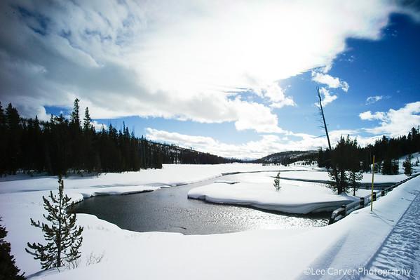 Yellowstone Scenics