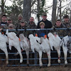 CTO Foothills at Outfall Farms for an awesome swan hunt - 2012