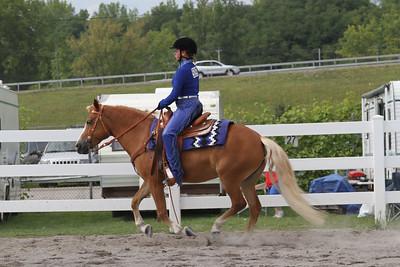 Western - Ponies