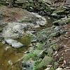 Fuquay Mineral Spring, North Carolina, 9-25-2011