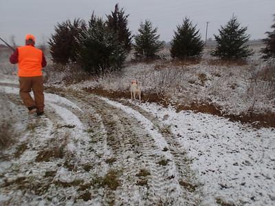 Pheasant Hunt 12-23-17